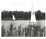 Sailing on Campus