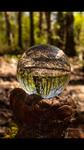 Series: Crystal 3 by Merideth Schmidt