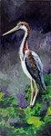 Tricolored Heron by Meredith Sullivan