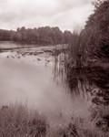Lake Oneida 1